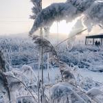 Oymyakon Tempat Tinggal Terdingin di Dunia
